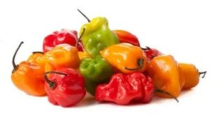 Collection of hot peppers