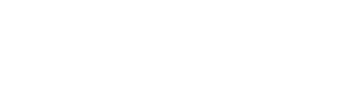 Brands Points Plus logo
