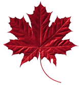 Red Canadian Maple Leaf Image